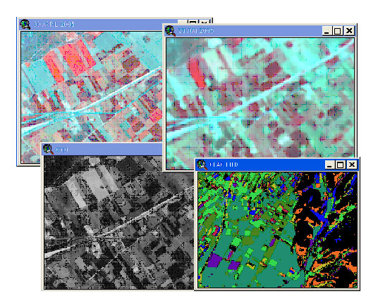 Remote Sensing control of area based Subsidies 2005 Campaign -Greece